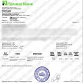 Поверенення 09 березня 2021 – 597 євро з Tradershome
