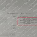 Поверенення (чарджбек) 6 вересня 2021 – 2724 доларів з Vlom